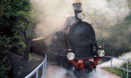 Foto di Trenino Verde Seui - Montarbu